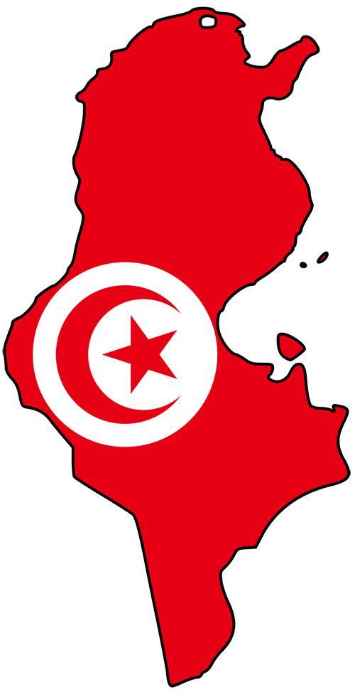 الشيعة يتمددون السبسي 2011_01_16_tunisia_flag_map.png
