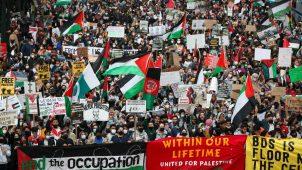 تضامن مع فلسطين