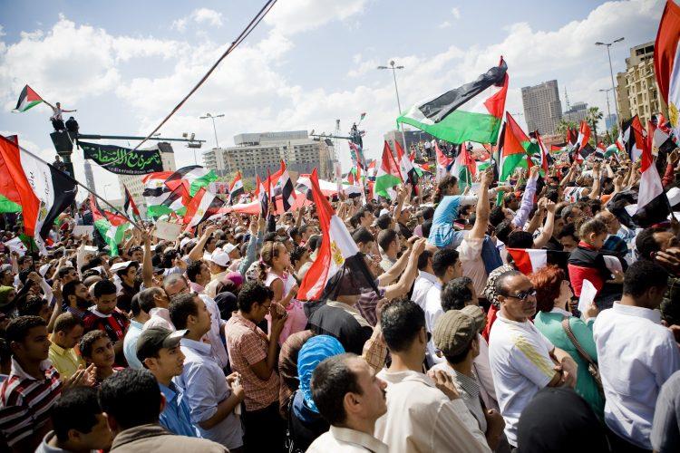 فلسطين في قلب ميدان التحرير